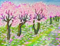 Pink cherry garden in blossom Stock Photo