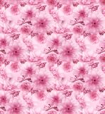 Pink cherry sakura flower floral digital art seamless pattern texture background Royalty Free Stock Photography