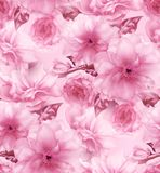 Pink cherry sakura flower floral digital art seamless pattern texture background Royalty Free Stock Images