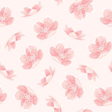 Pink cherry sakura japanese spring flowers pattern. Pink cherry sakura japanese spring flowers seamless pattern. Tree bloom blossom. Feminine girlish style mood vector illustration