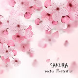 Pink Cherry Sakura Print royalty free illustration