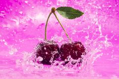 Pink Cherry Splash Stock Photo