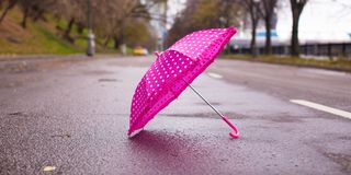 Pink children's umbrella on the wet asphalt Stock Image