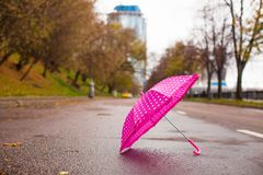 Pink children's umbrella on the wet asphalt Royalty Free Stock Photos