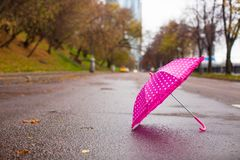 Pink children's umbrella on the wet asphalt Royalty Free Stock Photo