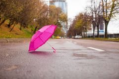 Pink children's umbrella on the wet asphalt Royalty Free Stock Image