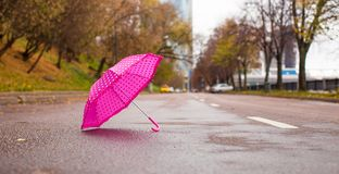 Pink children's umbrella on the wet asphalt Stock Images