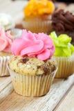 Pink chocolate chip cupcake Stock Photos