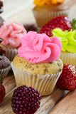 Pink chocolate chip cupcake Royalty Free Stock Photography