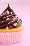 Pink chocolate cupcake. Against a pink background Stock Photos