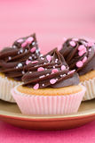 Pink chocolate cupcakes Stock Photos