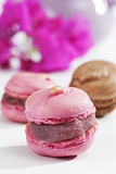 Pink and chocolate macaroons Royalty Free Stock Photos