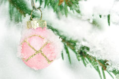 Pink Christmas bauble hanging outdoors in a Xmas tree Stock Photo