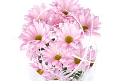 Pink chrysanthemum flowers bouquet Royalty Free Stock Image