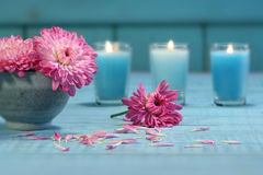 Pink chrysanthemum flowers with candles Royalty Free Stock Photography