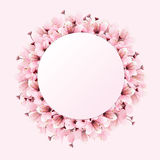 Pink circle space with flower Stock Photos