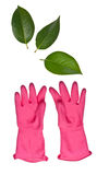 Pink Cleaning Gloves Reaching for Leaves Stock Photography