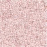 Pink cloth Stock Image