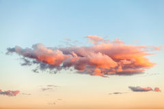 Pink cloud Royalty Free Stock Photography