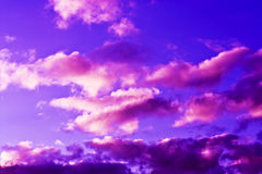 Pink clouds. A blue sunset sky with bright pink fluffy clouds Stock Images