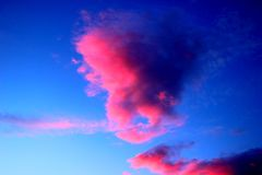 Pink clouds on the blue sky after sunset royalty free stock images