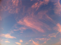 Pink clouds. This picture represents a blue sky with many pink clouds stock images