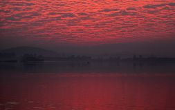 Pink Clouds during Sunrise. Pink Clouds are forming ceiling over the lake Royalty Free Stock Photo