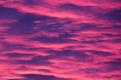 Pink Cloudscape. Impressive pink and purple cloudscape in the evening Royalty Free Stock Image