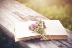 Pink clover flowers collected in a small bouquet lie on an open shabby book royalty free stock image