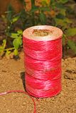 Pink coil on the soil Stock Photos