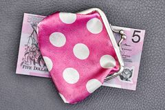 Pink Coin Purse Stock Image