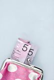 Pink Coin Purse Royalty Free Stock Photo