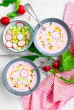 Cold radish and cucumber soup Royalty Free Stock Photos