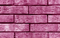 Pink color brick wall texture. Stock Images