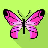 Pink color butterfly icon, flat style. Pink color butterfly icon. Flat illustration of pink color butterfly vector icon for web design Stock Image