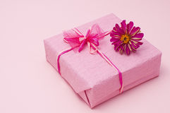 Pink color gift box Royalty Free Stock Images