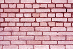 Pink color grungy brick wall pattern. Royalty Free Stock Image