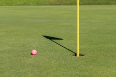 Pink golf ball by flag and hole on putting green stock image