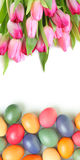 Pink and colorful Stock Image