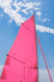 Pink colorful  sails of a sailboat Royalty Free Stock Photo