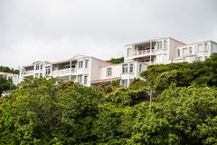 Pink Condos Over Green Shrubs Royalty Free Stock Photography