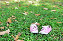 Pink converse sneakers. Fashion in floor Stock Photography