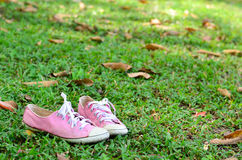 Pink converse sneakers. Fashion in floor Stock Photos