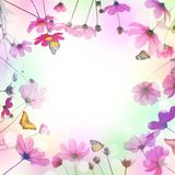 Pink cosmos flower and butterfly in the meadow