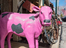 Pink cow with one ear Stock Photo