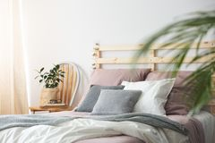 Pink cozy bedding. Pink and grey cozy bedding on wooden bed in modern bedroom stock image