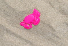 Pink crab in sand Royalty Free Stock Image
