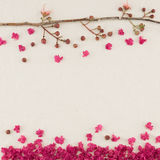 Pink crape myrtle flowers with branch. And falling petals on the ground stock photography