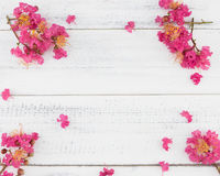 Pink crape myrtle flowers on white wood Royalty Free Stock Image
