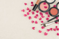 Pink crape myrtle petals with cosmetic,. Brush and lip gloss with copy space stock images